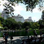 3歳児母、MBAに挑戦ーニューヨークへ留学?!