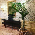 ホテル椿山荘でロクシタンスパ体験